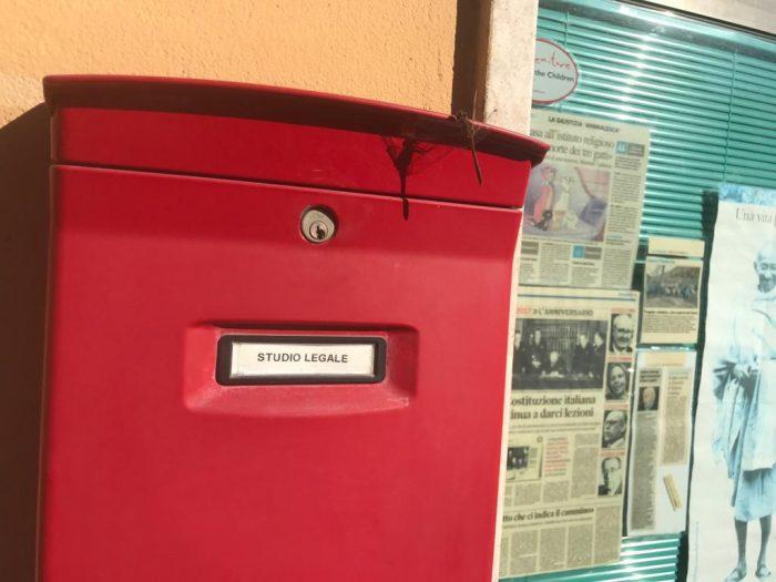 9. libellula cassetta postale